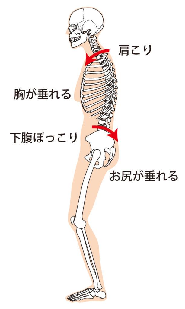 猫背姿勢によって起こる身体の不具合の一覧